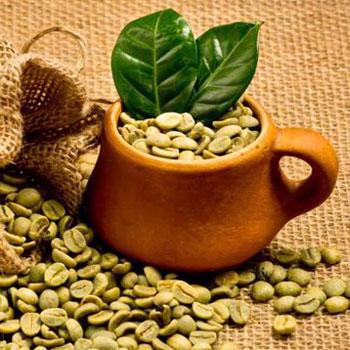 خواص ویژه دارویی قهوه سبز