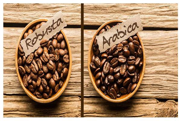 فرق بین انواع قهوه ها